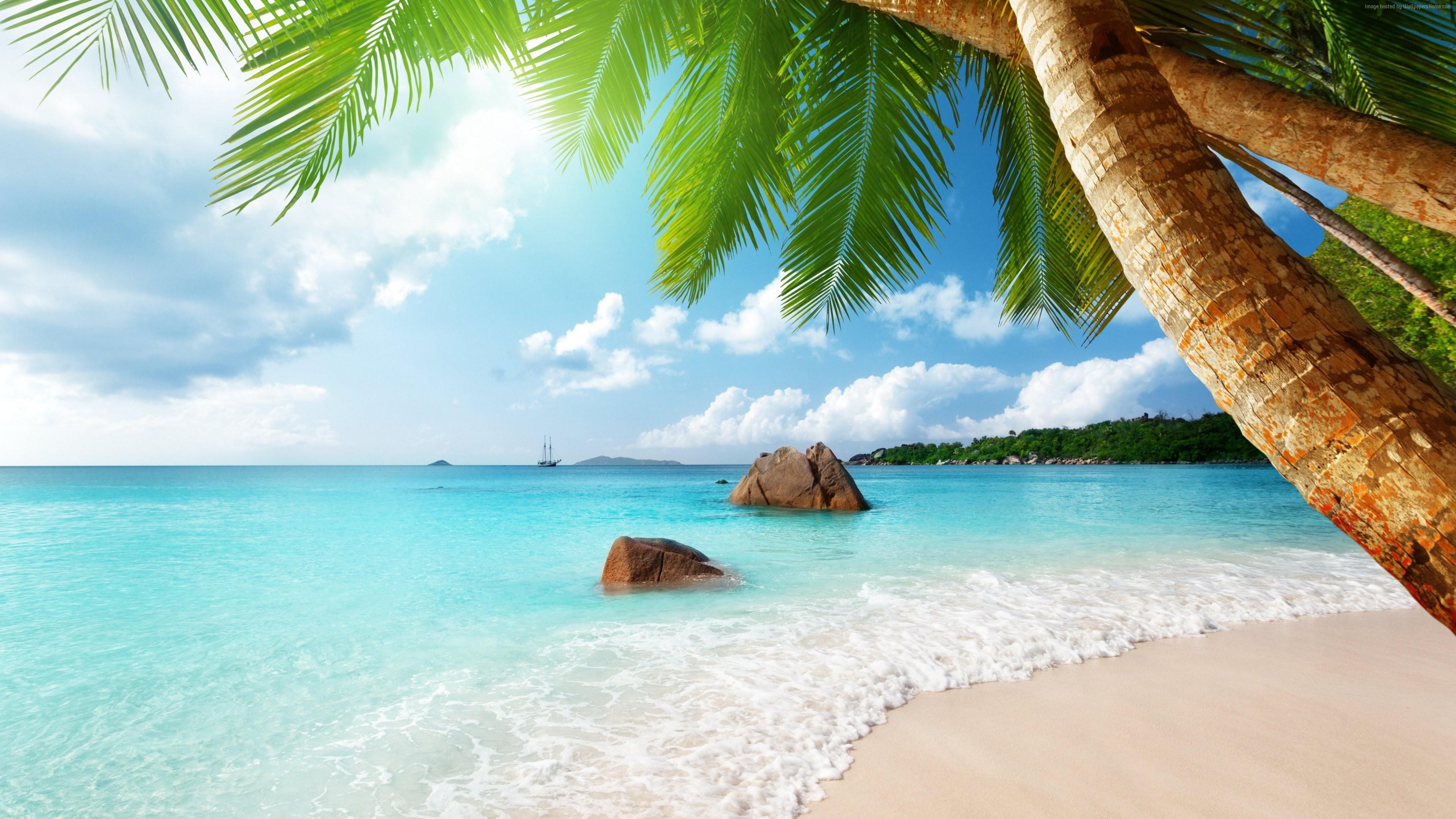 обои на экран море пляж песок голубая вода приглашает собственников