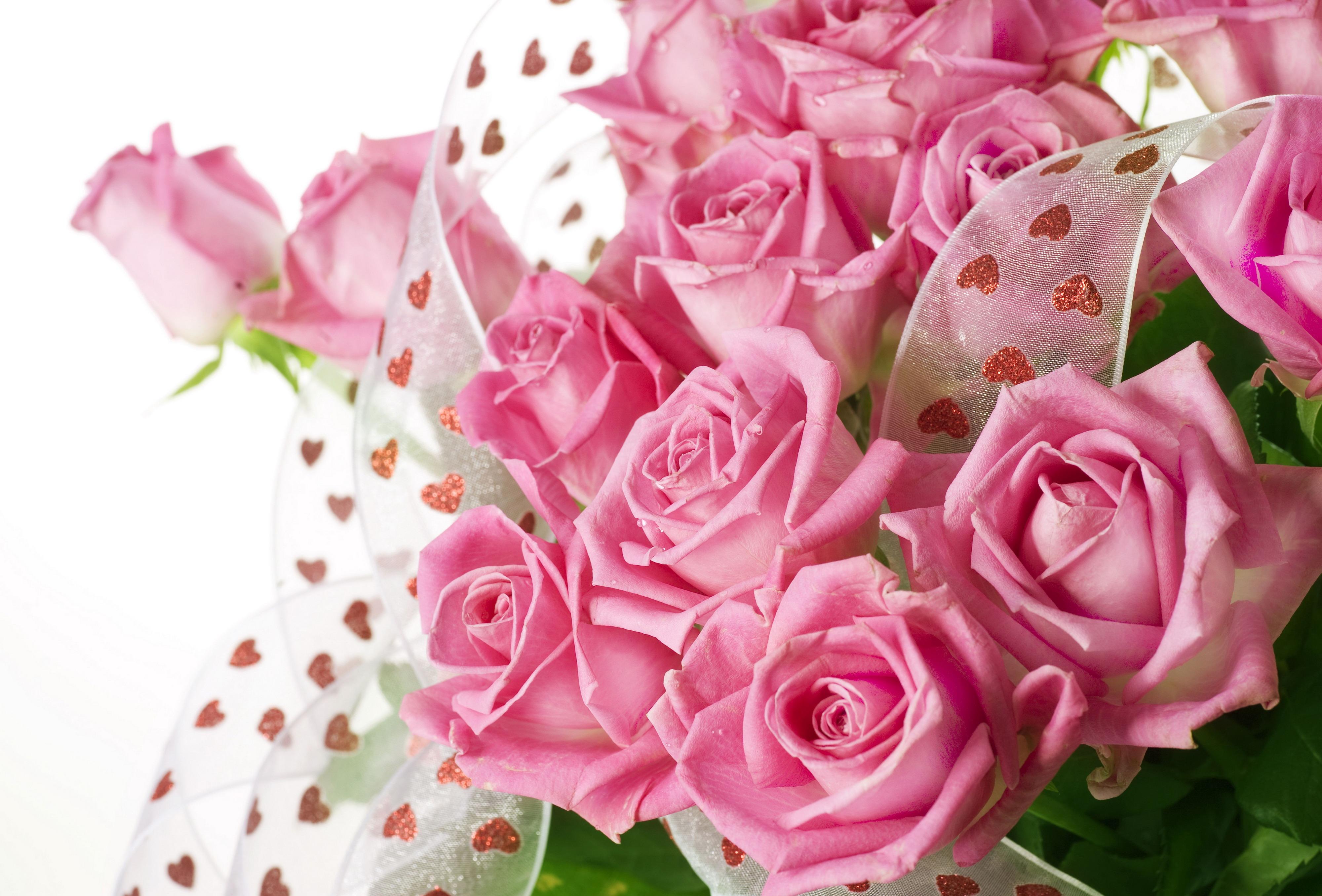 Картинки розы красивые с пожеланиями