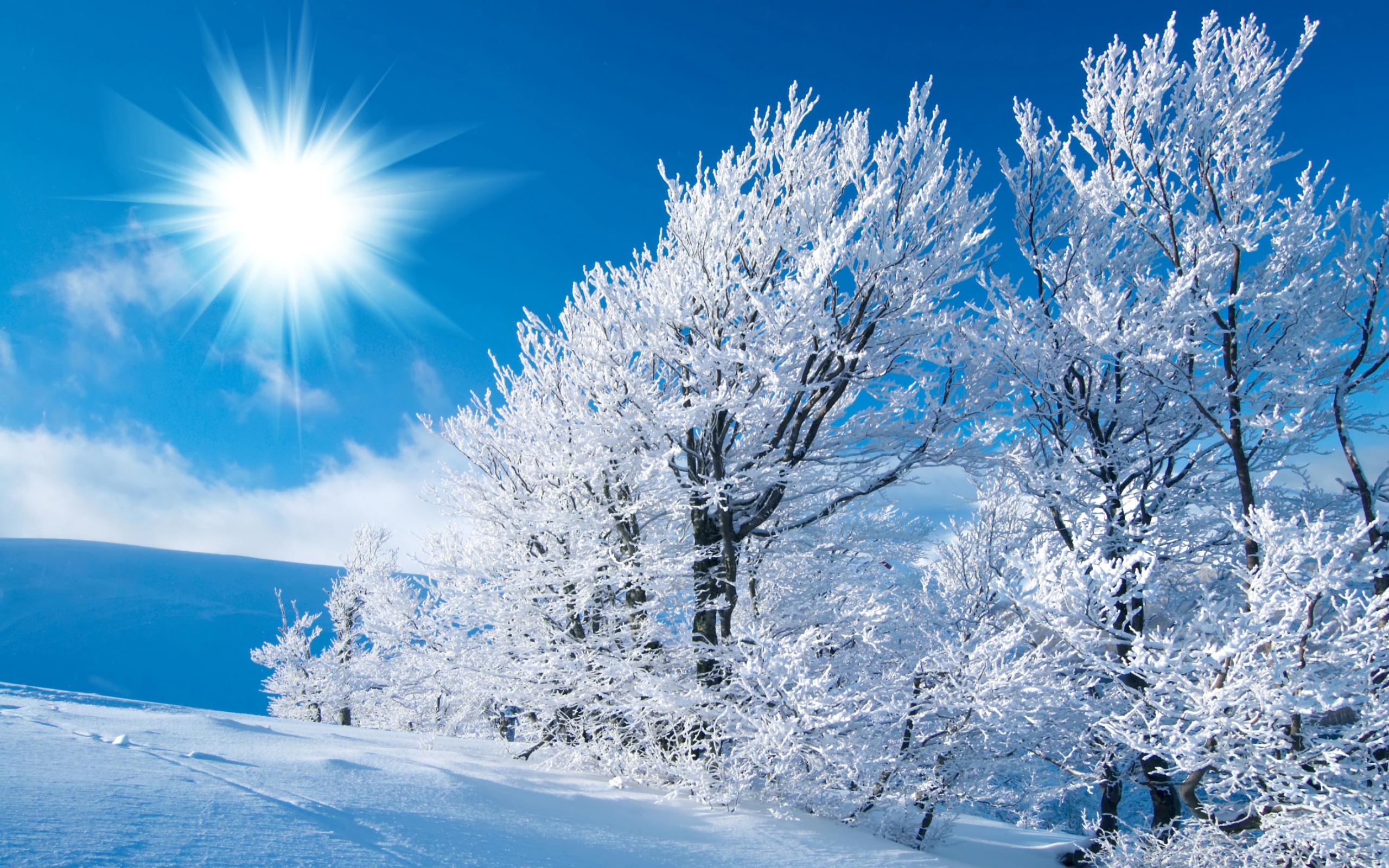 настоящее время яркие картинки зима чем разница между
