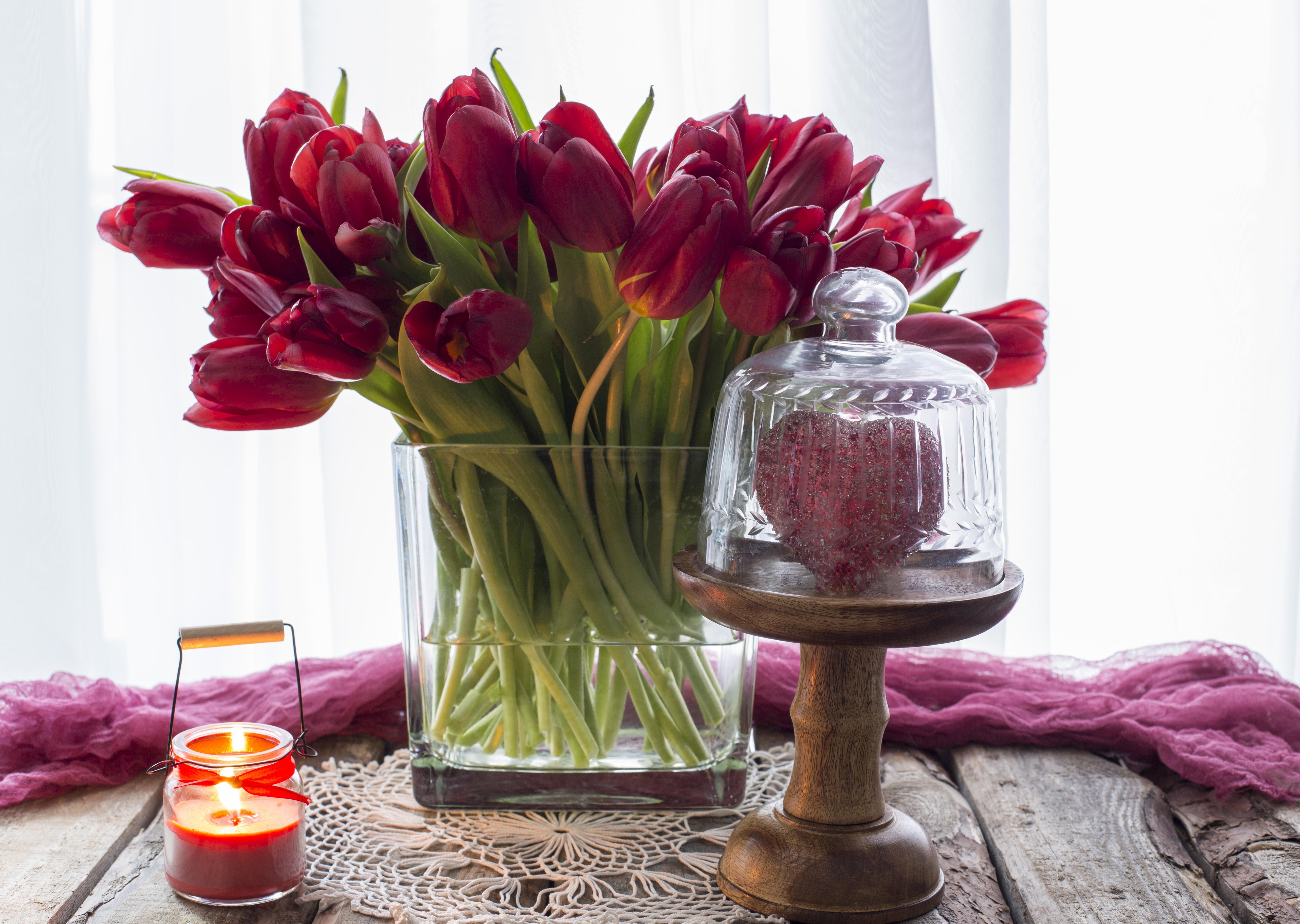 обои на рабочий стол красные тюльпаны в вазе солнышка гостях