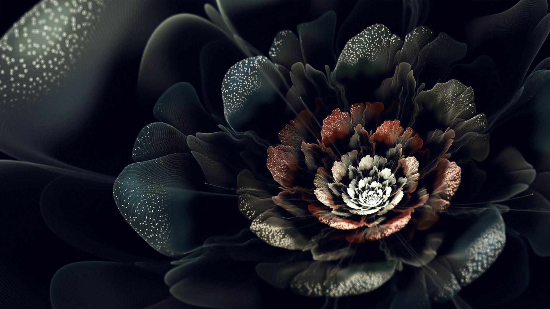 картинки на экран цветы на черном фоне окультурили