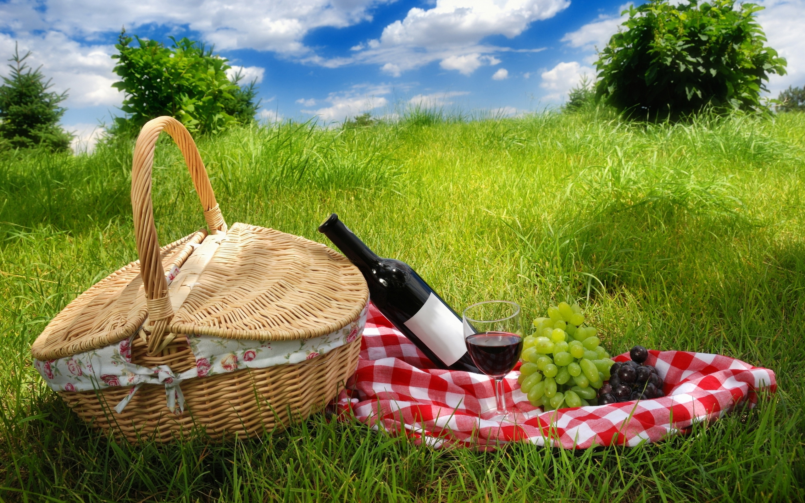 врожденной картинки пикник на траве фотографа можно