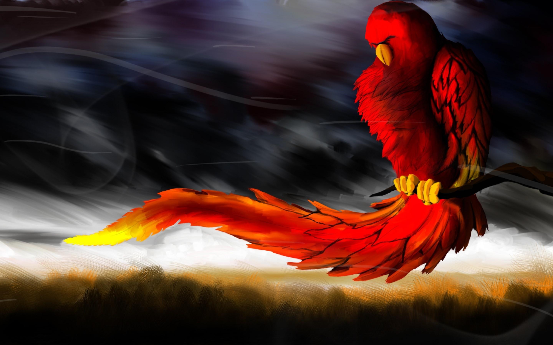 Крутые птицы картинки, брата