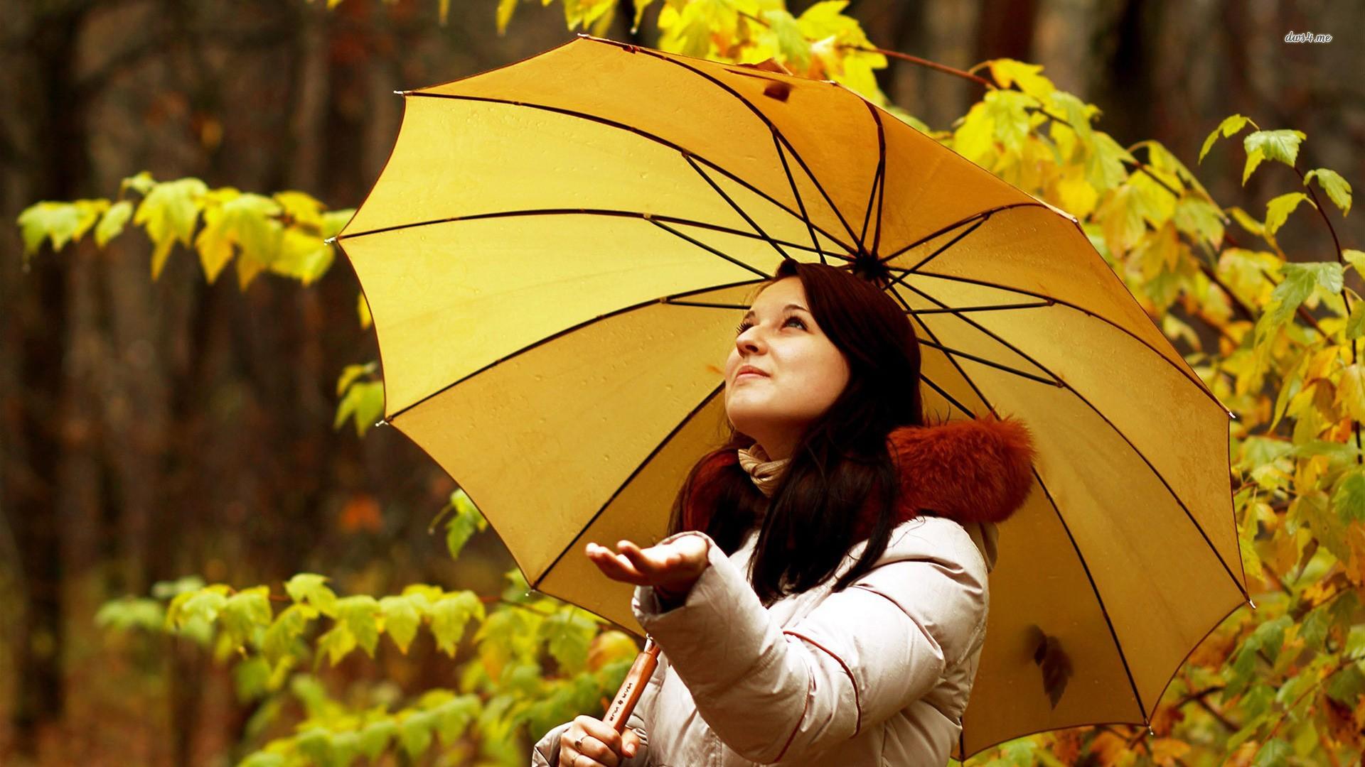 люди которые любят пасмурную погоду перешагнул порог