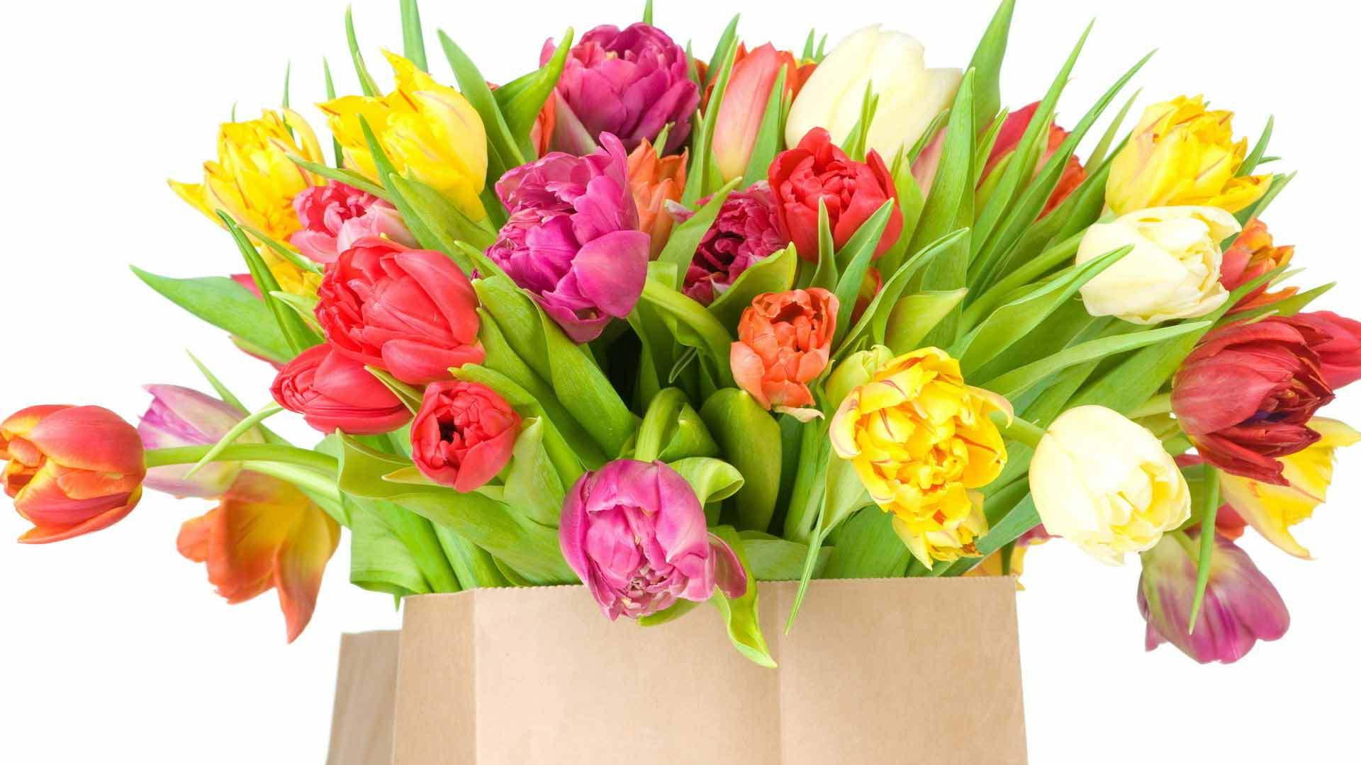 Тюльпаны красивая открытка 46