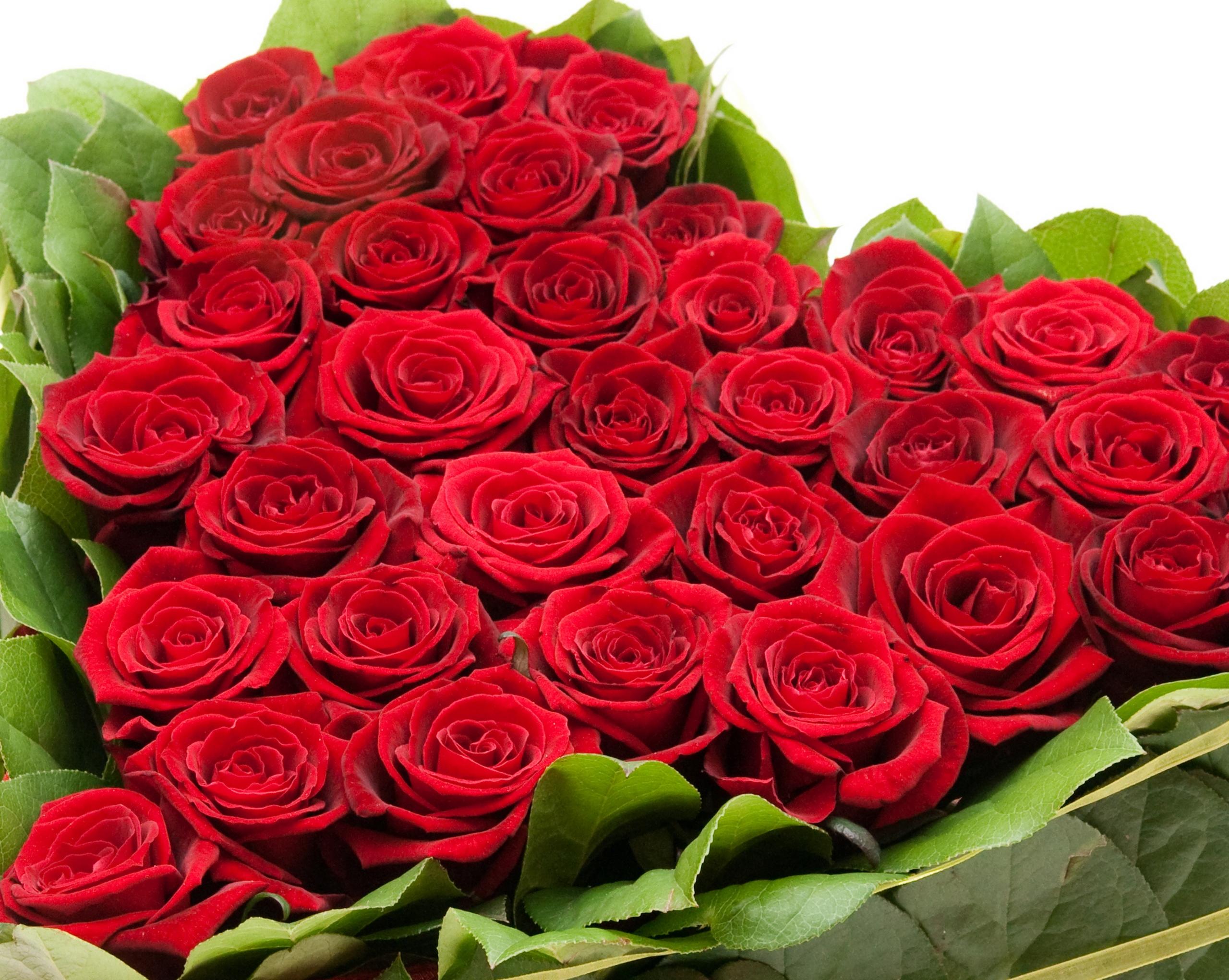 Картинка красивый букет » букеты цветов » цветы » картинки 24.