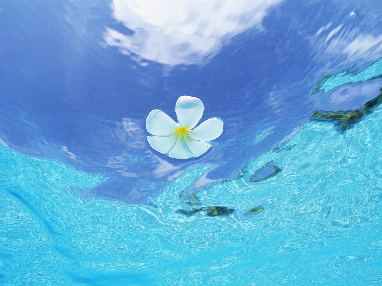 лето белой воды саундтрек