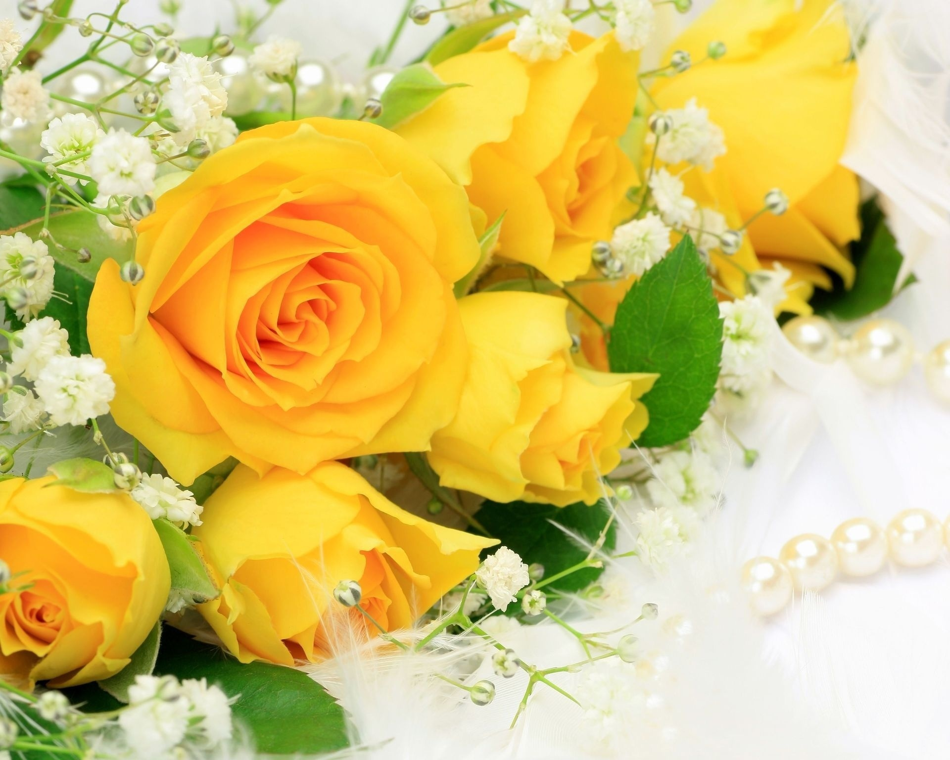 Желтые розы с поздравлениями 668