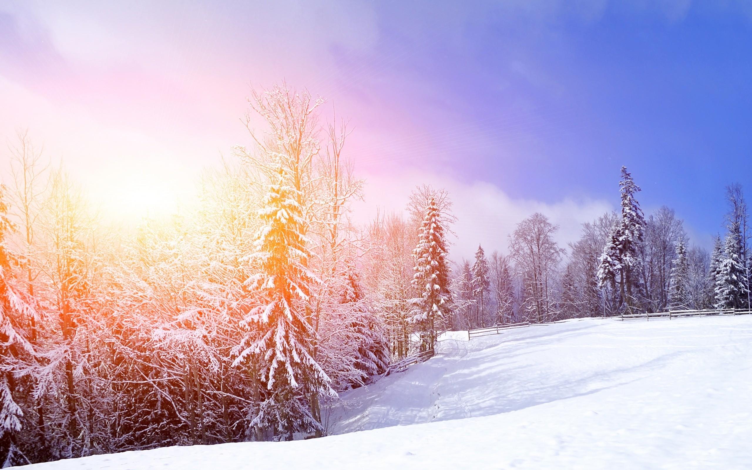 обои зима снежная на рабочий стол № 640817 без смс